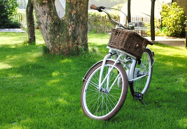 Bicycle, Basket, Transport, Bike, Garden, Grass, Ride