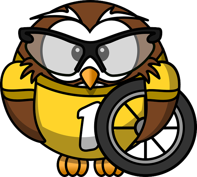 Owl, Animal, Bicycle, Bike, Bird, Cyclist, Funny