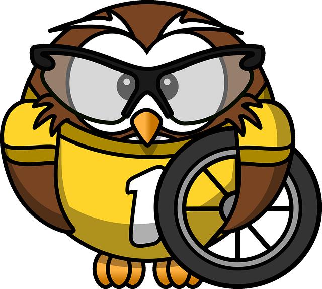 Owl, Animal, Bicycle, Bike, Bird, Cyclist, Funny