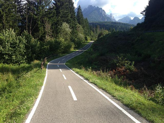 Bicycle Path, Forest, Mountains, Nature