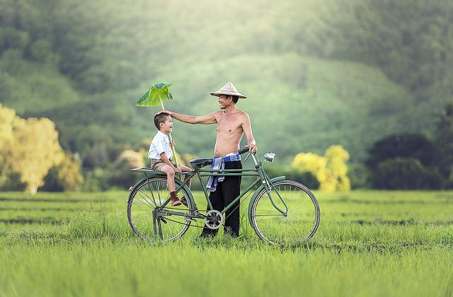 Bicycle, His Son, Relationship, Parrent, Two, Enjoy