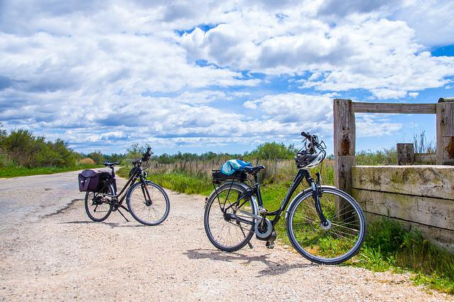 Wheel, Transport, Road, Bicycle, Summer, Travel, Nature