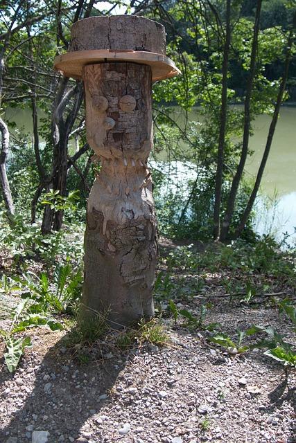 Bieber, Bieber Bite, Nature Tree