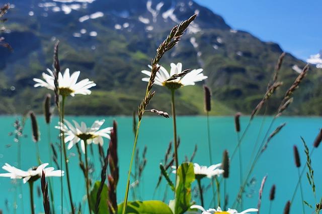 Silvretta, Vorarlberg, Montafon, Austria, Bielerhöhe