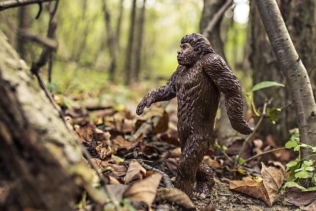 Bigfoot, Evolution, Anthropoid Ape, Neandertals