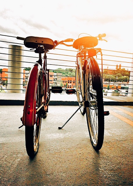 Bike, Bicycle, Biking, Sport