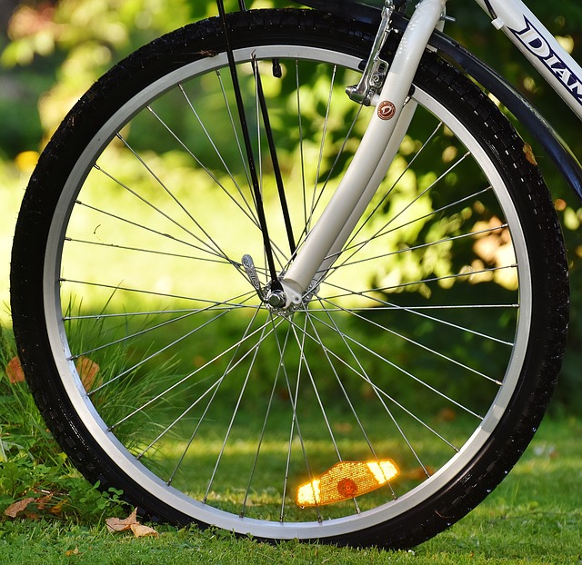 Bike, Front Wheel, Cycle, Wheel, Cycling, Sport