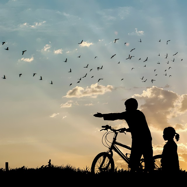 Silhouette, People, Sunset, Bike