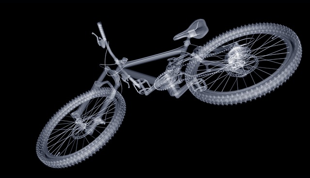 Mountain Bike, Bike, Mature, Wheel, Saddle, Spokes