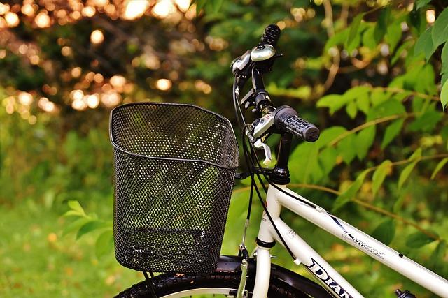 Bike, Cycle, Wheel, Cycling, Sport, Two Wheeled Vehicle