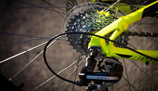 Exchange, Chain, Bike, Mtb, Sport, Summer