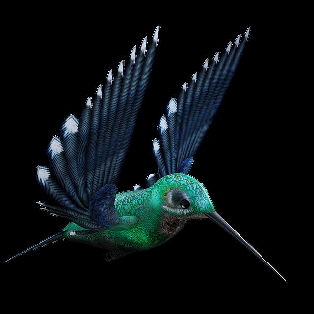 Hummingbird, Birds, Bill, Feather, Fly, Foraging