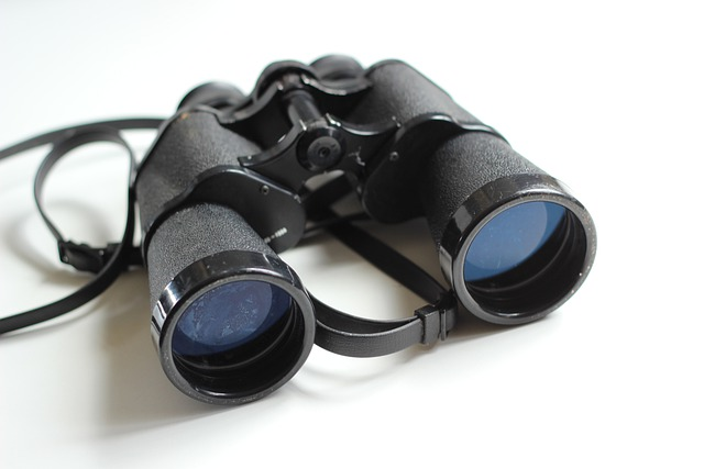 Binoculars, Old, Antique, Equipment, White, Spy