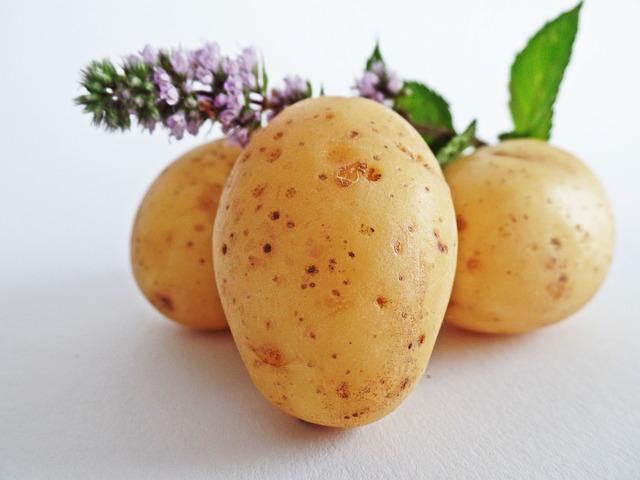 Potatoes, Vegetables, Field, Eat, Bio, Nature, Bauer