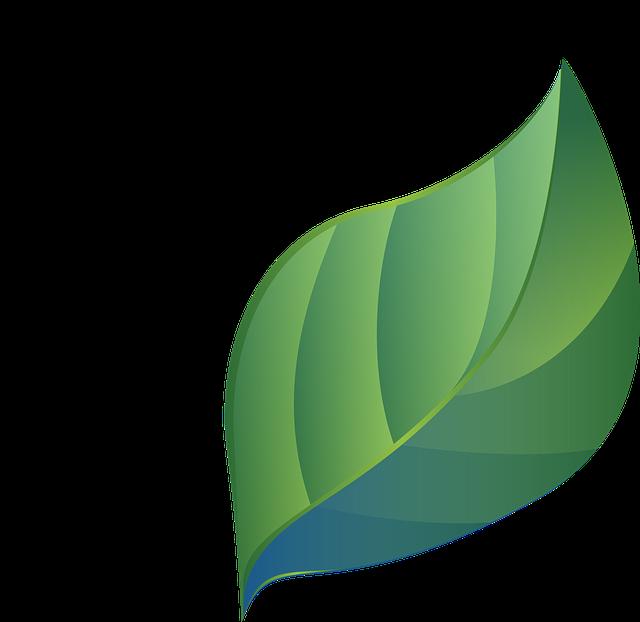 Leaf, Blue Green, Stylized, Gradients, Eco, Bio