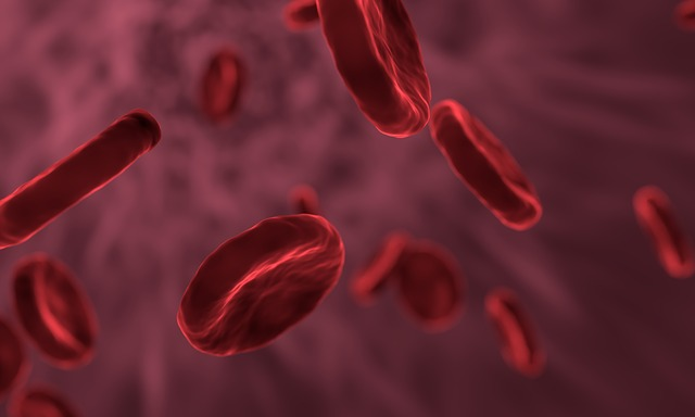 Red Blood Cells, Microbiology, Biology, Blood, Bacteria