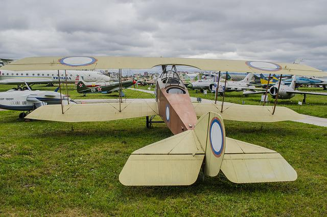 Anatra-anasal, Vintage, Plane, Biplane, The Airplane