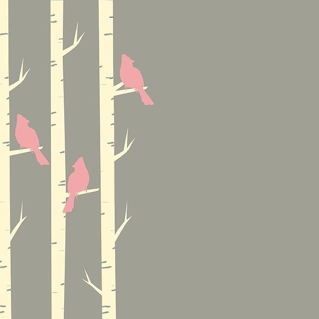 Birds, Trees, Birch, Birch Trees, Perched, Pink, Brown