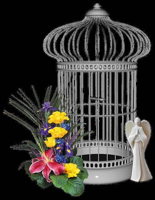 Bird Cage, Yellow Flower, Flower, Yellow, Decoration