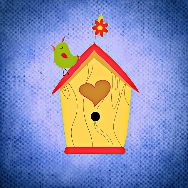 Aviary, Bird, Funny, Colorful, Nesting Box, Garden