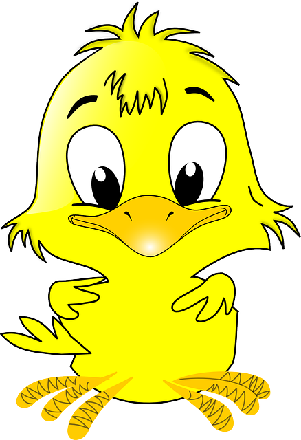Chick, Easter, Animal, Baby, Bird, Cute, Fluffy, Yellow