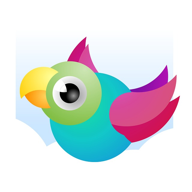Bird, Funny, Colorful