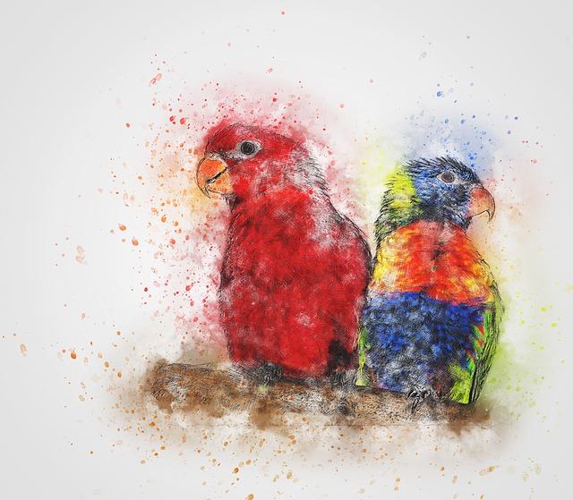 Parrot, Bird, Lorikeet, Art, Abstract, Watercolor