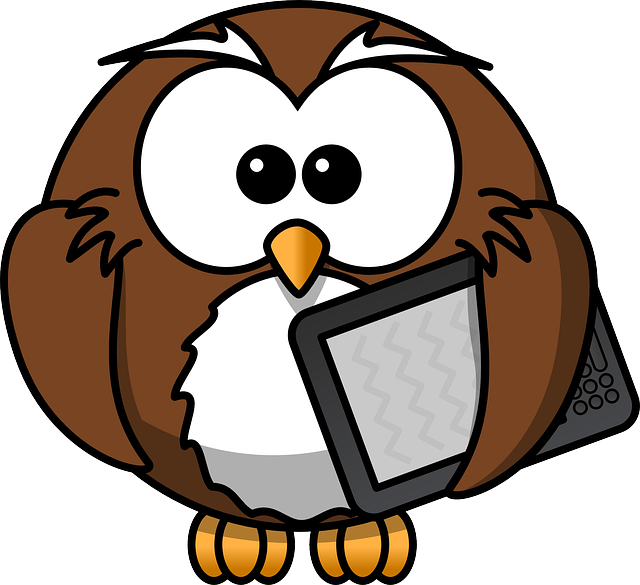 Owl, Animal, Bird, Book, E-book, Funny, Kindle, Reader