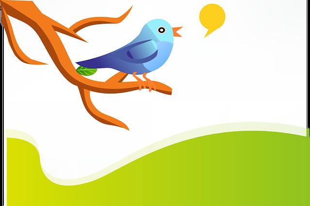 Tweet, Twitter, Bird, Blue, Twig, Branch, Green, Hills