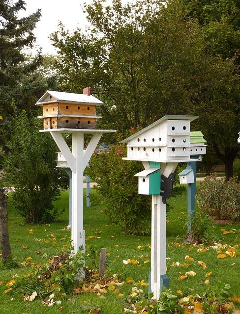 Birdhouse, Bird, Wildlife, House, Nature