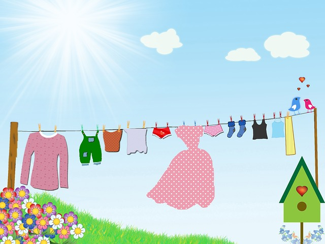 Dress, Drying, Clothesline, Clouds, Knickers, Birds