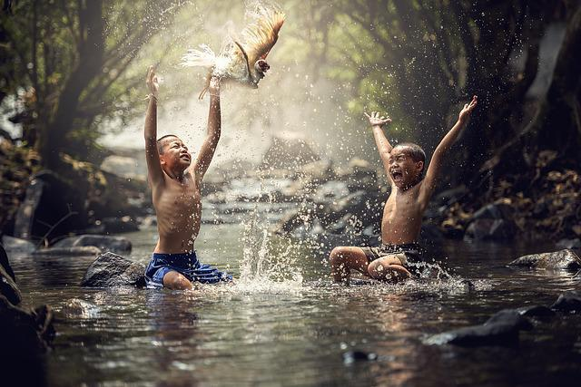 Children, River, Birds, Splash, Water, Boy, Animals