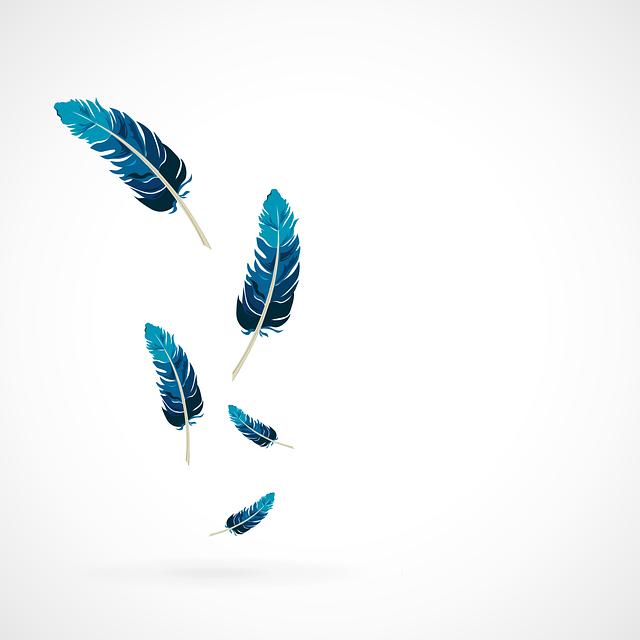 Feather, Blue, Vector, Fallen Down, Birds