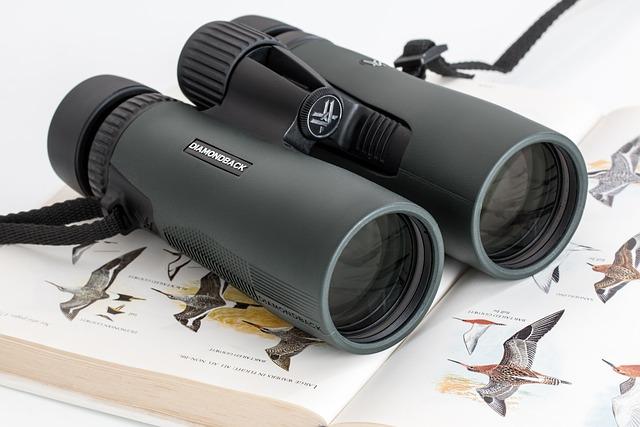 Binoculars, Birdwatching, Spy Glass, Spying, Spy, Watch