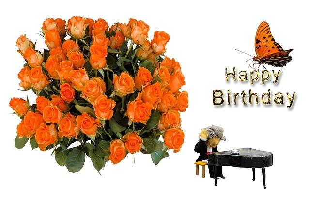 Birthday, Birthday Card, Greeting Card, Greeting