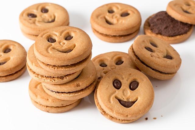 Cookie, Biscuit, Chocolate Cookie, Chocolate Biscuit