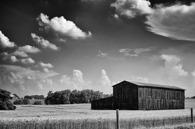 Monochrome, Black And White, Country, Rural, Barn