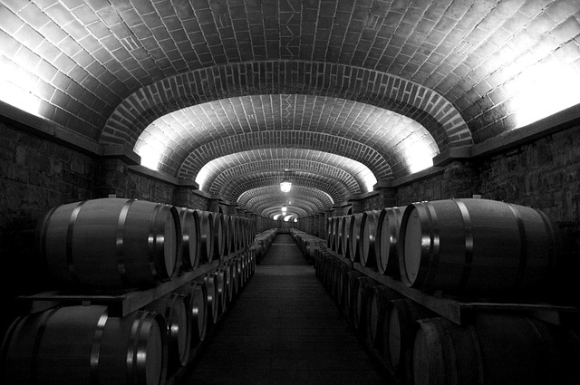Botti, Ceiling, Lights, Cellar, Wine, Black And White