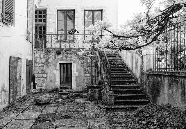 Old House, Run Down, Leave, Black And White, Vézelay