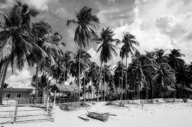 Philippines, Tropics, Tropical, Black And White, Sky