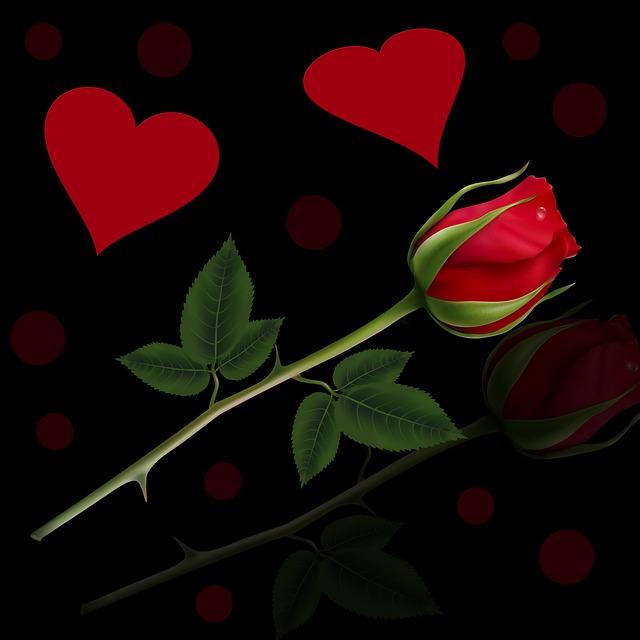 Background, Red Rose, Rosa, Heart, Black Background