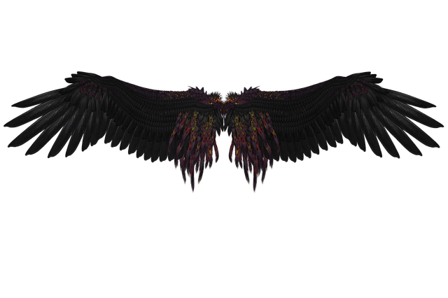 Wing, Feather, Angel, Flying, Black, Black Engel