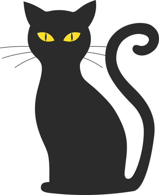Cat, Halloween, Silhouette, Mieze, Black Cat, Black