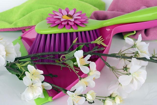 Clean, Spring Putz, Blade, Broom, Kehrset, Flowers