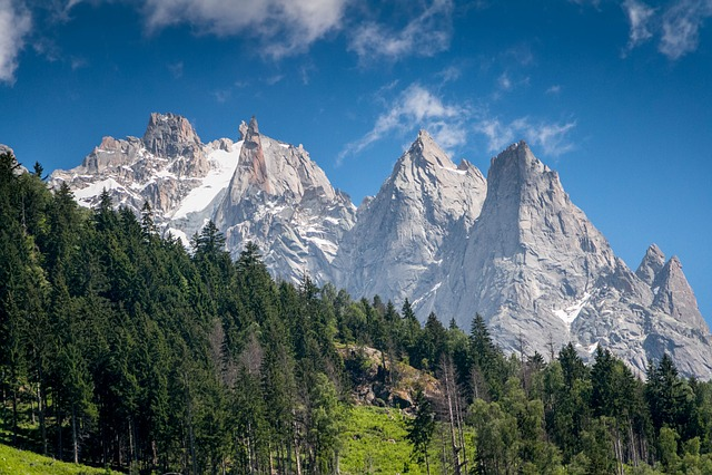 Chamonix, Mountain, Park, Alps, France, Blanc, Nature