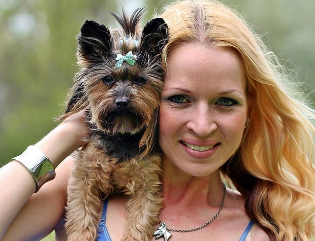 Yorkie, Blonde Woman, Facial, Love, Dog