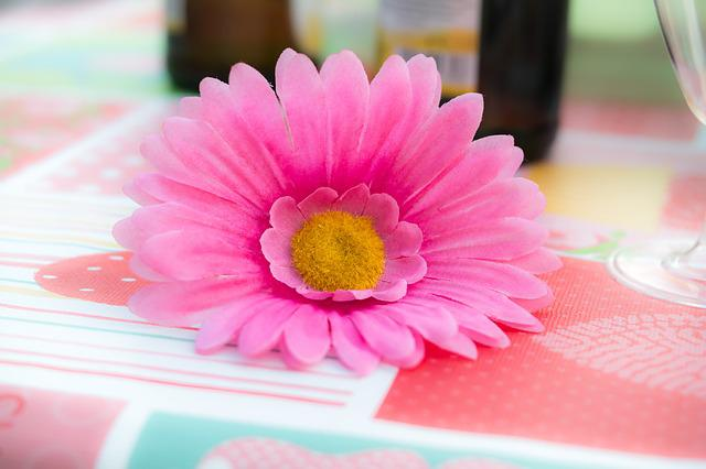 Flower, Decoration, Blossom, Bloom, Table, Ornament