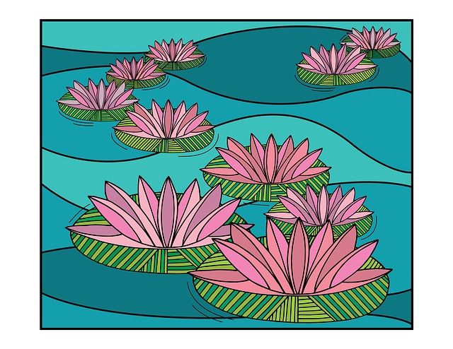 Water Lily, Lilies, Water, Flower, Bloom, Nature, Plant