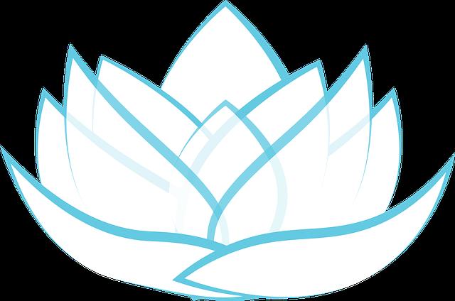 Lotus, Transparent, Blossom, Graphic, Illustrator