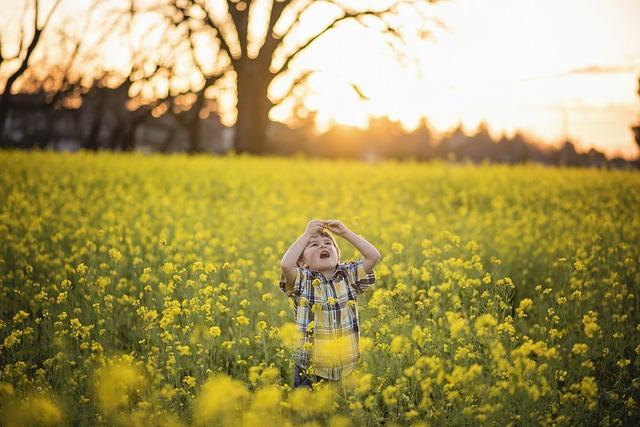 Flower, Yellow, Mustard, Yellow Flowers, Blossom
